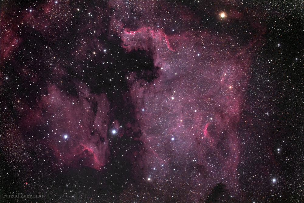 North America & Pelican Nebulas